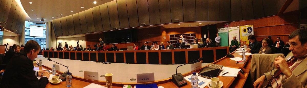 brüsszel hearing3