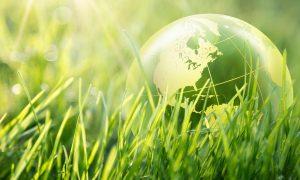 környezewtvédelem