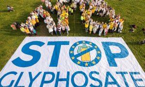 A glifozát nevű gyomirtó szer EU-s betiltását célzó európai polgári kezdeményezéshez több mint 1,3 millió uniós állampolgár csatlakozott.